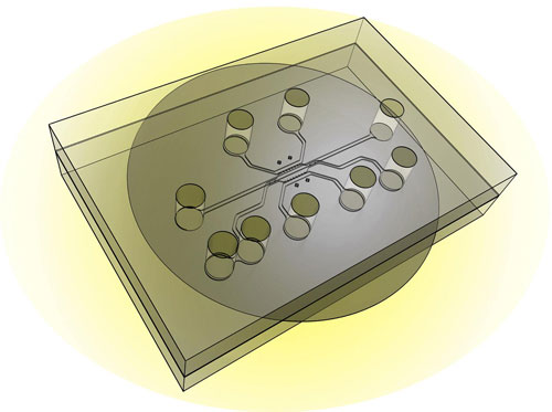design of a new chip capable of simulating a tumor's microenvironment