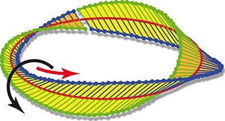 Strong focussing can generate a Möbius strip from circularly polarised light