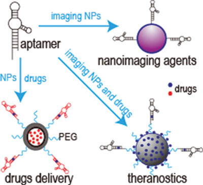Aptamers and Their Applications in Nanomedicine
