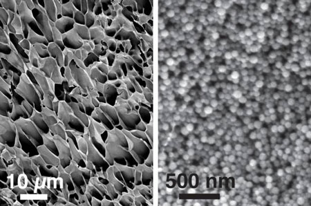 hydrogels made of nanoparticles interacting with long polymer chains