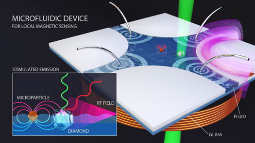 A diamond nanocrystal (white object to the right of center) is used to map the magnetic field around a particle (red object at center)