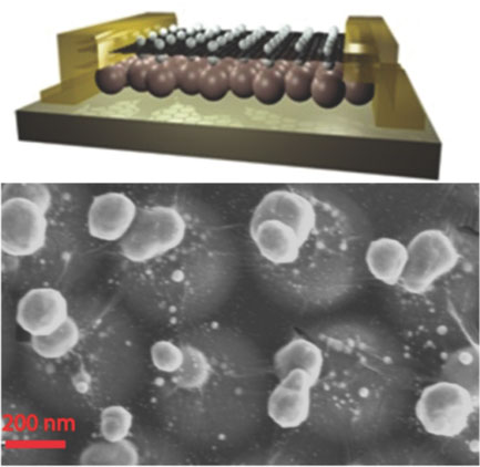 two planar arrays of metal nanoparticles are fabricated that are vertically separated by atomic dimensions, corresponding precisely to the thickness of a single layer of graphene