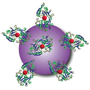 titanium dioxide nanoparticle