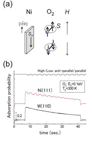 Control of the oxygen spin direction by the defining magnetic field
