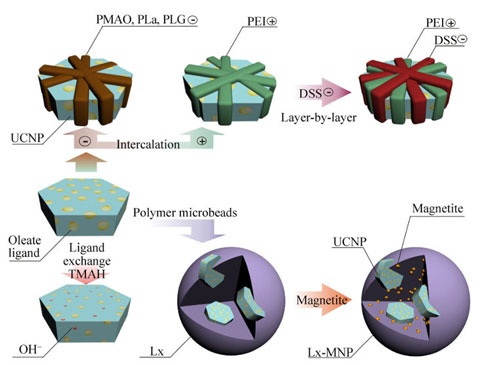 Different types of coating for upconversion nanoparticles