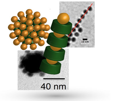 defined architectures consisting of proteins (green in the model) and gold nanoparticles