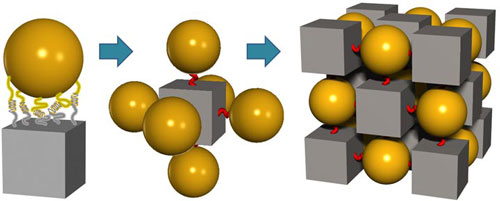 DNA tethers lead cubic blocks and spheres to self assemble