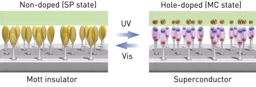 Mott insulator and superconductor