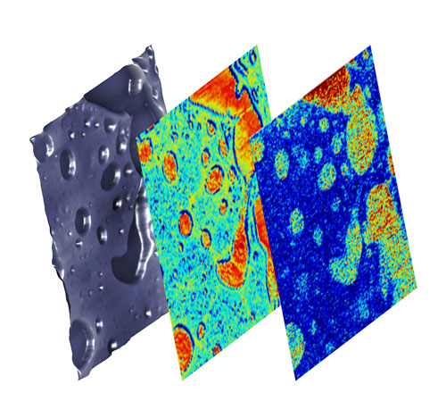 surface topography, elasticity of the bulk material and buried chemical behavior