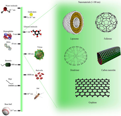 Comparison of nanomaterials sizes