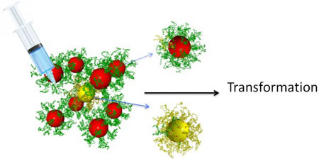 Injecting different kinds of reprogramming DNA strands can change the interparticle interactions