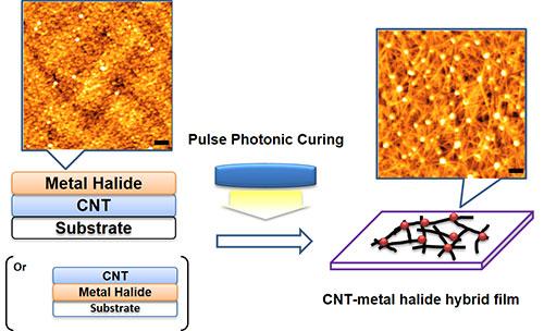 CNT transparent conductive film production process