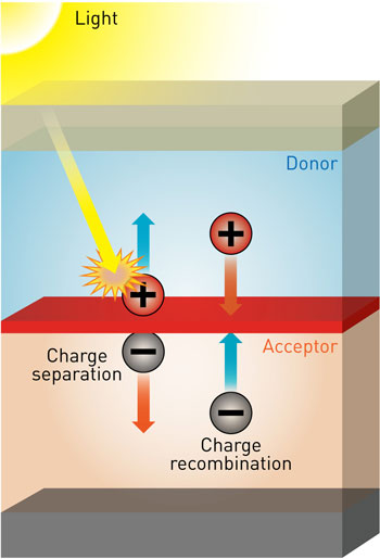 donor/acceptor interfaces on organic photovoltaics