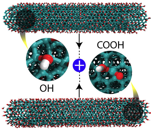 altering carbon nanotubes with carboxyl (COOH) and hydroxyl (OH) groups