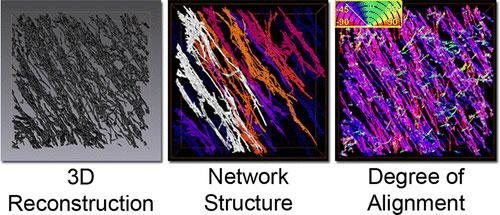 Carbon Nanotube Network Structure in nanocomposites