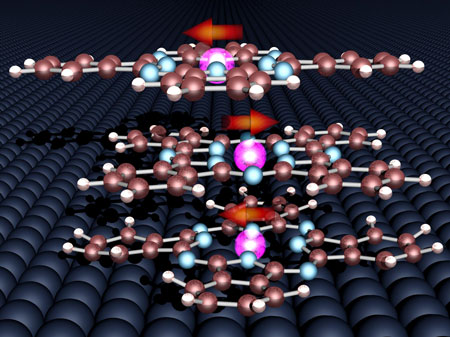 The magnetic moments of the three organic molecules and the cobalt surface align