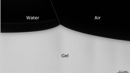 droplet moving on gel