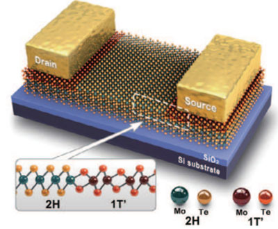 2H-MoTe2 and 1T'-MoTe2 transition line and metal electrodes attached to the 1T'-MoTe2