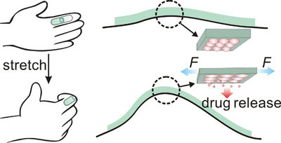 a stretchable drug delivery mechanism