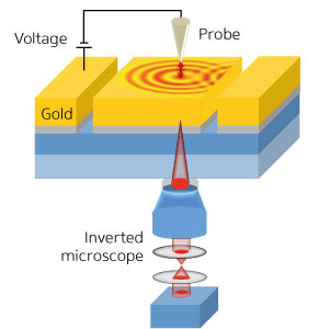 experimental setup used to investigate the directional excitation of surface plasmon polaritons in a one-dimensional gold grating