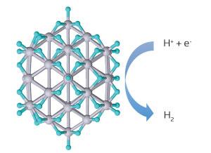platinum nanoparticle catalyst
