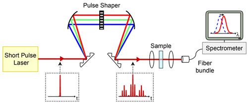 two-dimensional spectroscopy setup