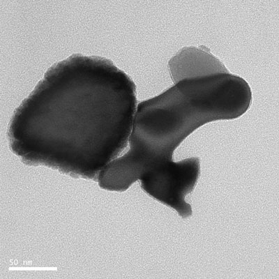 Transmission electron microscopy image of the natural nanoparticle