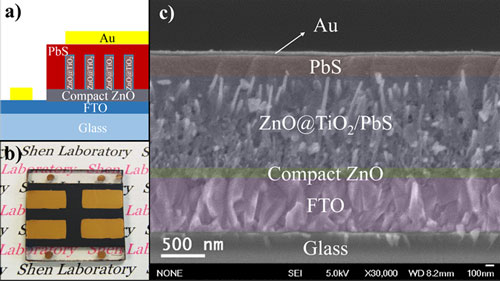 A schematic illustration of the solar cells with zinc oxide (ZnO) nanowire heterojunctions