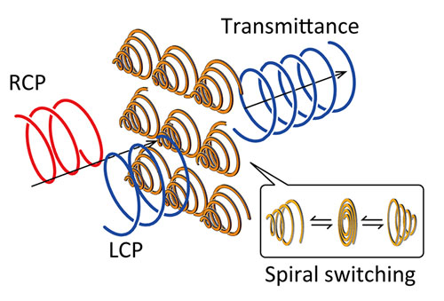 A schematic illustration of polarization modulation by the spiral metamaterial