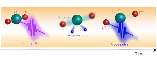a look at how the atoms in a molecule change when the molecule is bombarded with X-rays