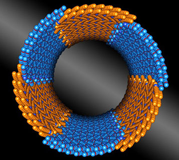 a peptoid (a stand-in for a small protein) composed of two chemically distinct blocks (shown in orange and blue) that assembles itself into tiny tubes