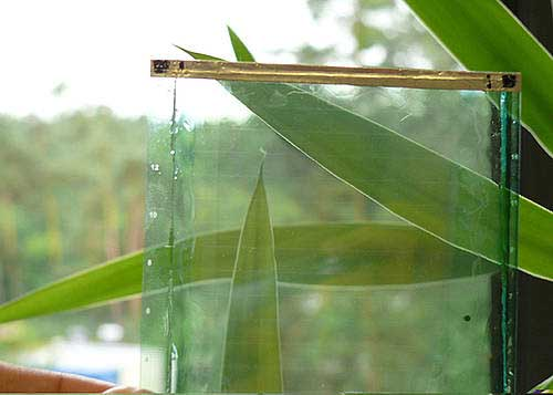 Organic solar cells can be manufactured as flexible and transparent modules