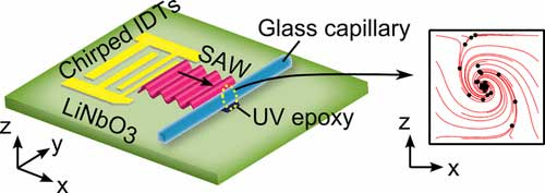 acoustofluidic chip generates single vortex acoustic streaming inside a glass capillary