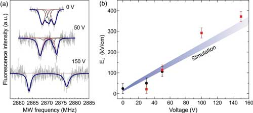 Optically detected magnetic resonance spectra