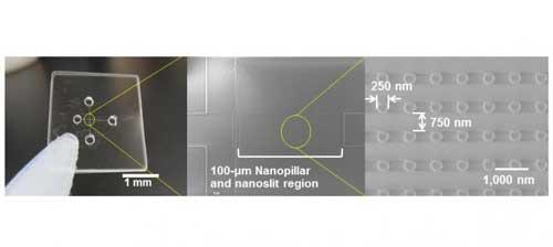 Nanobiodevice for Ultrafast Cancer Detection