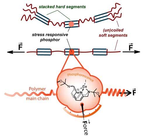 Incorporation of a mechanophore into a polyurethane polymer