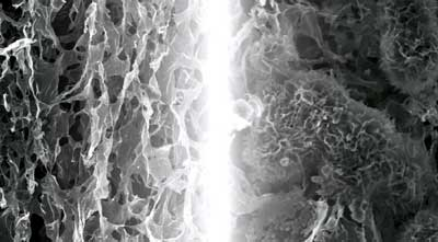 Stabilizing molecule could pave way for lithium-air fuel