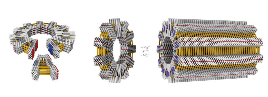 DNA-origami surpasses important thresholds