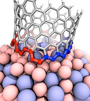 This illustration shows the interface between a growing carbon nanotube and a cobalt-tungsten catalyst