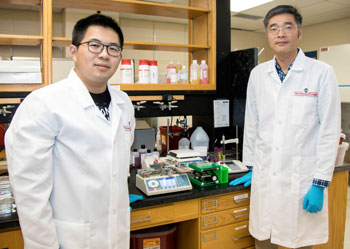 Leidong Mao (right) and graduate student Yang Liu in lab
