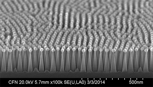 A scanning electron microscope image of antireflective nanocones