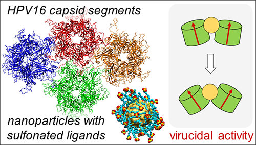 Solid-core nanoparticles coated with sulfonated ligands that mimic heparan sulfate proteoglycans