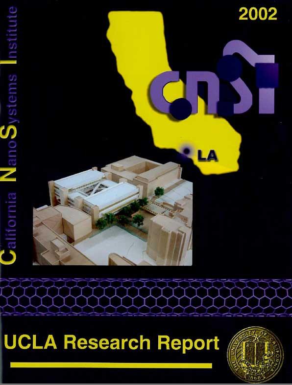 2002 CNSI Annual Research Report