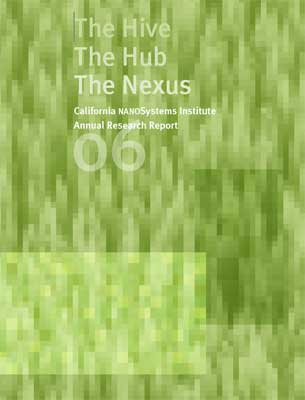2006 CNSI Annual Research Report