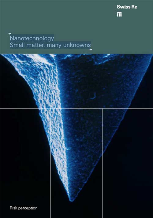 Nanotechnology - Small matter, many unknowns
