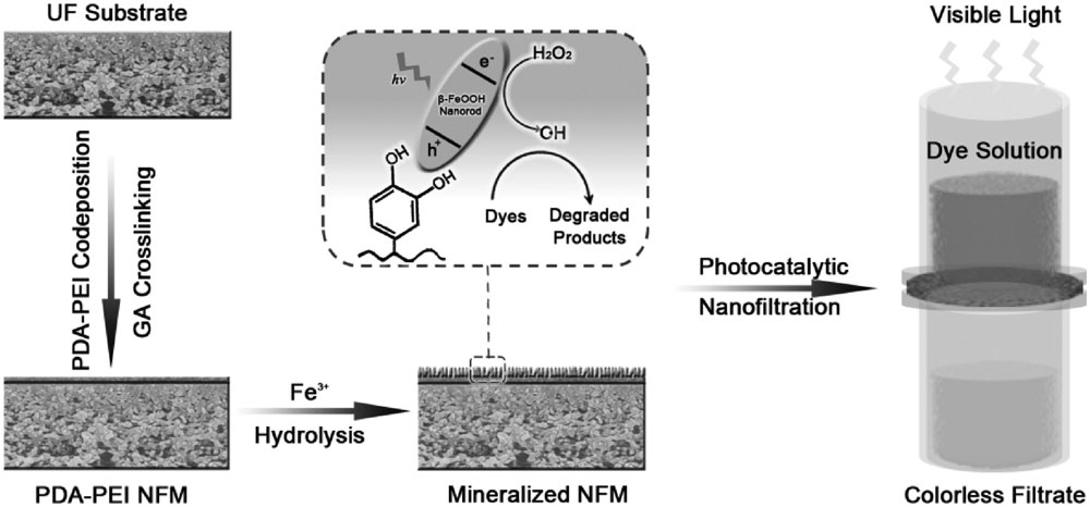 Self-cleaning photocatalytic nanomemnes for water filtration on