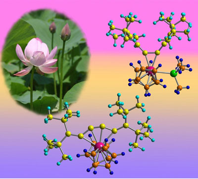 >Schematic showing that adding or removing an extra chemical group (green) to the zirconium atom (pink) can open and close the structure of the molecule like the petals of a lotus flower