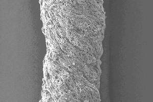 A bundle of Electrospun Fibres viewed under a powerful microscope