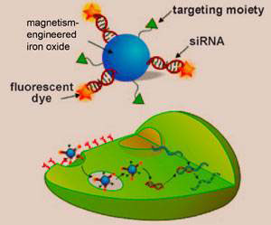 All-in-one nanoparticle
