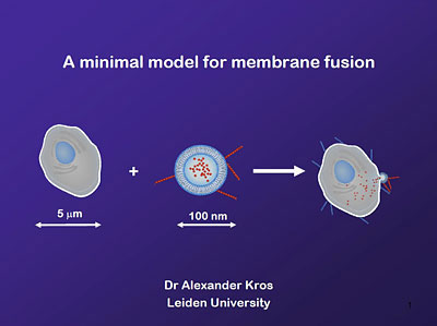 The contents of a liposome disappear in the cell once the membranes of the cell and the liposome have fused.